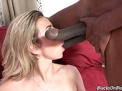 Alana Luv skillfully warms two black guys up with hot blowjob.
